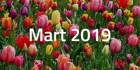 Yeni ve Yeniden Gelenler (Mart)
