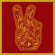 Stone Temple Pilots 2010 - CD