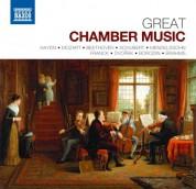 Çeşitli Sanatçılar: Great Chamber Music - CD