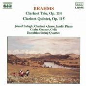 Brahms: Clarinet Trio, Op. 114 / Clarinet Quintet, Op. 115 - CD
