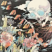 The Shins: Heartworms - Plak