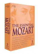 Çeşitli Sanatçılar: The Essential Mozart - DVD