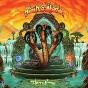 Tash Sultana: Terra Firma (Limited Deluxe Edition Box Set - Transparent Red Vinyl) 2 LPs - Plak