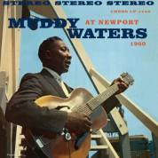 Muddy Waters At Newport - Plak