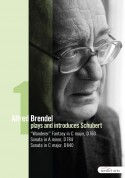 Alfred Brendel: Schubert: Late Piano Works Vol.I - Wanderer-Fantasie / Piano Sonatas, D. 784 and D. 840 - DVD