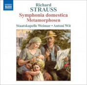 Antoni Wit: Strauss, R.: Symphonia Domestica / Metamorphosen - CD