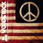 Çeşitli Sanatçılar: Woodstock 40 Years On - Back to Yasgur's Farm - CD