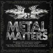 Çeşitli Sanatçılar: Metal Matters 2014 - CD