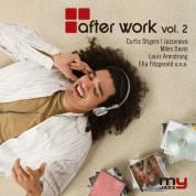 Çeşitli Sanatçılar: After Work Vol. 2 - CD