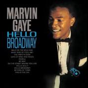 Marvin Gaye: Hello Broadway - Plak