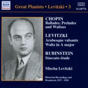 Mischa Levitzki: Levitzki, Mischa: Complete Recordings, Vol.  3 (1927-1938) - CD