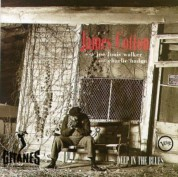 James Cotton, Joe Louis Walker, Charlie haden: Deep In The Blues - CD