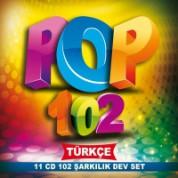 Çeşitli Sanatçılar: Pop 102 - CD