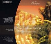 Dan Laurin, Drottningholm Baroque Ensemble: Vivaldi: Recorder Concertos - CD