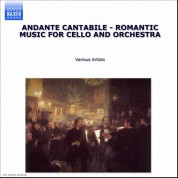 Çeşitli Sanatçılar: Andante: Romantic Music for Cello and Orchestra - CD