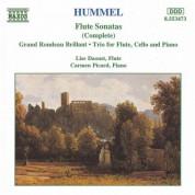 Hummel: Flute Sonatas / Flute Trio / Grand Rondeau Brillant - CD