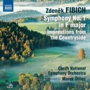 Marek Štilec: Fibich: Symphony No. 1 - Impressions from the Countryside - CD