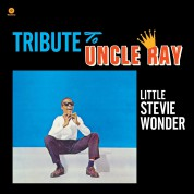 Stevie Wonder: Tribute To Uncle Ray - Plak