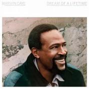 Marvin Gaye: Dream Of A Lifetime (Transparent Blue Vinyl) - Plak