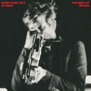 Spoon: Everything Hits At Once / The Best of Spoon - Plak