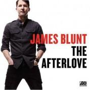 James Blunt: The Afterlove - Plak