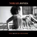 Norah Jones: Pick Me Up Off The Floor - Plak