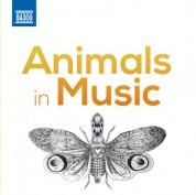 Çeşitli Sanatçılar: Animals in Music - CD