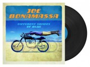Joe Bonamassa: Different Shades Of Blue - Plak