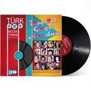 Çeşitli Sanatçılar: Türk Pop Müzik Tarihi 1960-70'lı Yıllar Vol. 2 - Plak