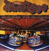 The Waterboys: Room To Roam (Remastered) - Plak