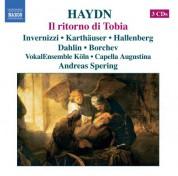 Andreas Spering: Haydn: Ritorno Di Tobia (Il) - CD