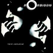 Roy Orbison: Mystery Girl - Plak