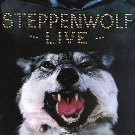 Steppenwolf: Live - Plak
