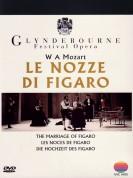 Glyndebourne Festival Opera: Mozart: Le Nozze Di Figaro - DVD