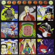 Pearl Jam: Backspacer - Plak