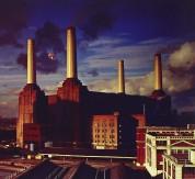 Pink Floyd: Animals - CD
