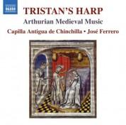 Capilla Antigua de Chinchilla: The Tristan's Harp - CD
