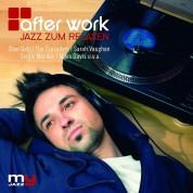 Çeşitli Sanatçılar: After Work - CD