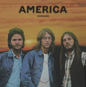 America: Homecoming - Plak
