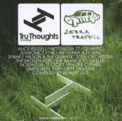 Çeşitli Sanatçılar: Shapes Compilation II - CD