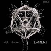 Bryce Dessner, Nico Muhly: Eighth Blackbird - Filament - Plak