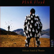 Pink Floyd: Delicate Sound of Thunder: Live - CD