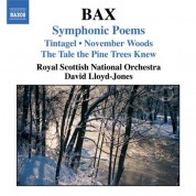 Bax: Symphonic Poems - CD