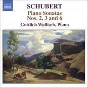 Schubert: Piano Sonatas Nos. 2, 3 and 6 - CD