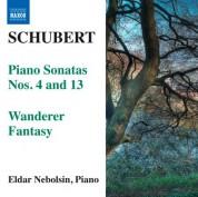 Eldar Nebolsin: Schubert: Piano Sonatas Nos. 4 & 13 - Wanderer Fantasy - CD
