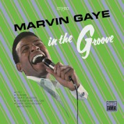 Marvin Gaye: In The Groove - Plak