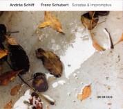 András Schiff: Schubert: Sonatas & Impromptus - CD