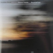 Sound & Fury, Edward Vesala: Invisible Storm - CD