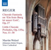 Martin Welzel: Reger, M.: Organ Works, Vol.  8 - CD