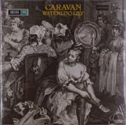 Caravan: Waterloo Lily - Plak